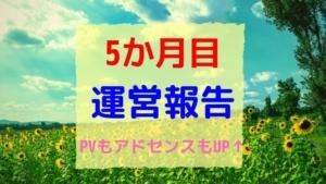 ブログ開設5か月:運営報告~PV増加!その訳は?~
